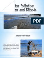 Water Pollution Causes and Effects
