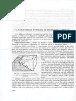 06 falii.pdf