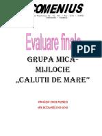 Evaluare Finala Grupa Mijlocie 2016