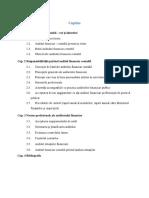 Cuprins Proiect Audit Financiar