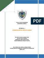 Informe Piña Almibar