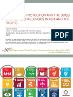 ADB Overview of Social Protection to Achieve the Sustainable Development Goals (SDGs)
