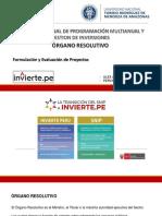 formulacion ppt