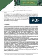 242164542-Artigo-Luciana-Nemer-pdf.pdf