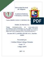 DETERMINACIÓN DE CONTAMINACIÓN BACTERIANA POR SALMONELLA-Sp.docx