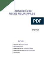 red neuronal 1.pdf