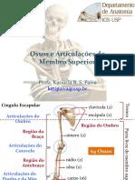 Ossos e Articulacoes Do Membro Superior
