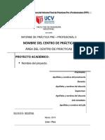 Esquema Del Informe PPP-II- V3 Detalle