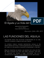 El Águila y La Vida del Cristiano-2
