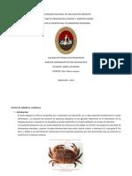 UNIVERSIDAD NACIONAL DE SAN AGUSTIN AREQUIPA paty.docx