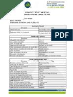 Curare Enano.pdf