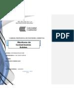 CONTAMINACION DE AIRE  INFORME CSS.docx