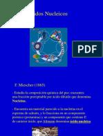 ACIDOS NUCLEICOS-1.ppt