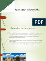 Plan de Manejo Pacopampa