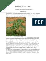 Manual Agroforestal Del Inga