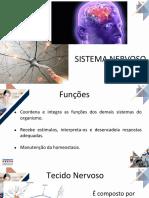 AULA 3 Anatomia Do Sistema Nervoso