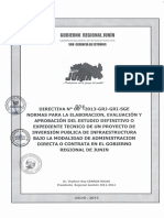 DIRECTIVA N° 004-2013 de la SUB GERENCIA DE ESTUDIOS - GOBIERNO REGIONAL JUNÍN