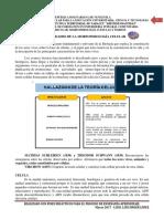 Generalidades de La Morfofisiologia Celular