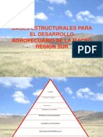 BASES ESTRUCTURALES PARA EL DESARROLLO AGROPECUARIO DE LA.ppt