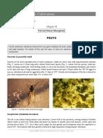 Mushroom Growers Handbook 1 Mushworld Com Chapter 8 3