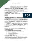 Resumo_1o_semestre (1)