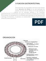 Regulacion Fisiologica Gi