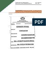 modelos-conciliacion-2.018..docx