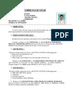 Surveyor CV