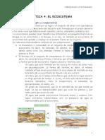 tema-4-el-ecosistema.pdf