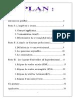 IR Professionnel Rapport