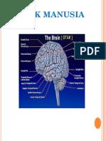 07. Otak dan cara kerjanya.pptx
