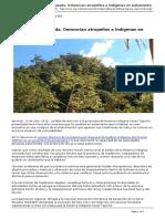 Servindi - Servicios de Comunicacion Intercultural - Existencia Amenazada. Denuncian Atropellos a Indigenas en Aislamiento - 2016-07-12