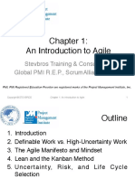 Stevbros Agile Practice Guide Chapter 1