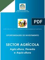 INVESTHuila_S.Agricola_PT1.pdf