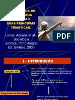 A Sociologia Do Direito Sua Historia e Suas Principais Tematicas