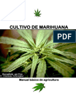 01-Cultivo_de_Marihuana_Manual_Basico_de_Agricultura.pdf