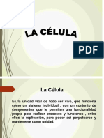 La Celula Segunda Clase de Anatomia
