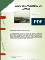 ANÁLISIS-SITUACIONAL-DE-LOMAS.pptx