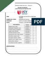 2.-INFORME-CALICATA.docx