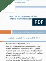 Tata Cara Pengumpulan SKP CPNS.pdf