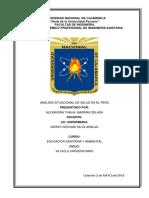 Analisis Situacional de Salud en El Perú