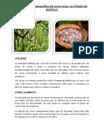 Informe de Condorito