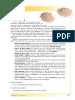 4. arroz.pdf