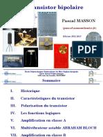 Bipolaire Cours - Projection - MASSON.pdf