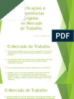 Qualificaçoes e Competencias Exigidas No Mercado Do Trabalho