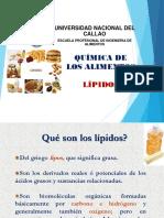*Lipidos