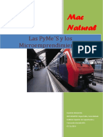 Plan de Negocios - Microemprendimiento Mac Natural