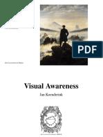Visual Awareness