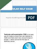 Testicular Self  Exam