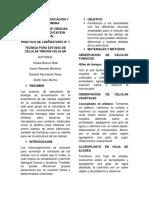 INFOMR BIOLOGIA.docx